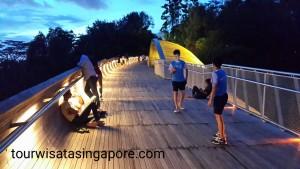 sunset matahari terbenam henderson waves bridge
