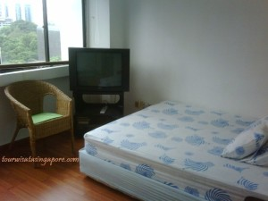 kamar lucky plaza orchard