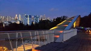 pemandangan sore senja malam dari atas henderson waves bridge