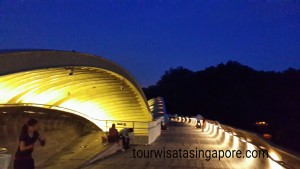 senja hari di henderson waves bridge